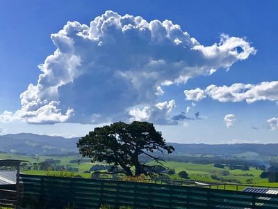 cpy cat cloud over One Tree
