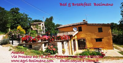 Photo for App. LA TANA B & B Bosimano-Frasassi Caves max. 8 people