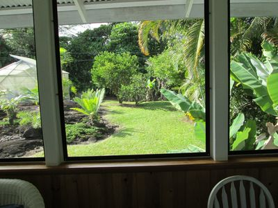Back yard view from Lanai