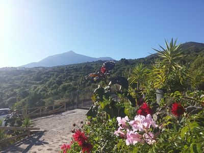 Photo for Ecolodge Tenerife: Beautiful ecological country house