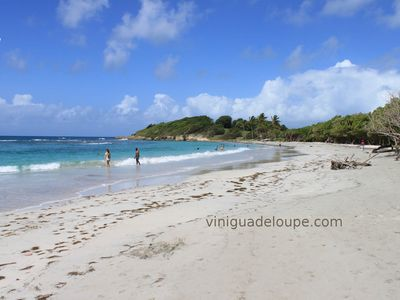 Photo for Apartment in villa 500 meters from the beach