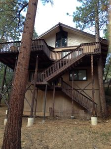 Photo for Need to Relax and Unwind? - our Cabin backs into the National Forest