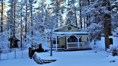 Sugar Bear Cottage: Adorable Mountain Getaway in the Woods!