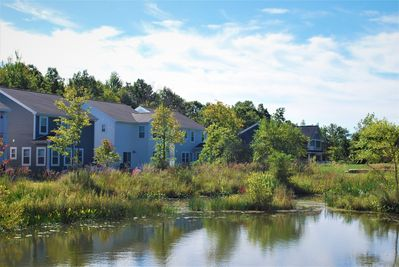 Dragonfly Pond & preserved wetlands behind the cottage create lovely views!
