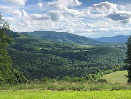 Photo for 1BR Cabin Vacation Rental in Dry Fork, West Virginia