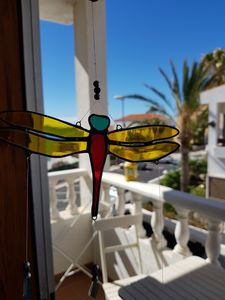 Photo for The Magic Dragonfly!