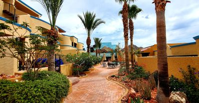 Well maintained courtyard to enjoy.