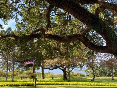 Photo for Red Mangrove - The Bay House & Bungalows of Fairhope