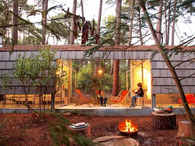 Photo for Architect house among the pines