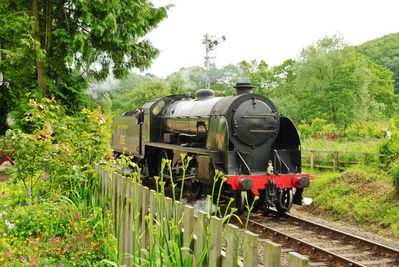 Steam train approaching the cottage