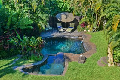 View of the pool from the lanai - Soak up the sun and then jump in this beautiful pool.