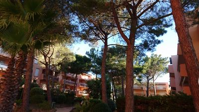 Photo for Apartment classified 2 * with view on the park with trees 100m from the beach