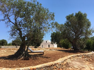 Photo for Grande Lamia - Ideal house for 12 - Swimming pool amid 3 hectares of olive trees