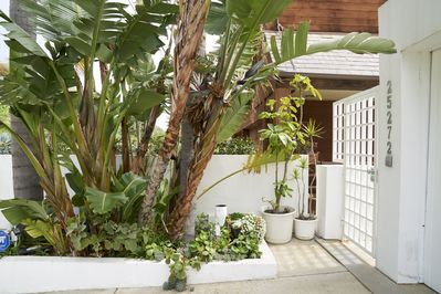Tropical Paradise in Malibu Gated Left Walkway to the Beach