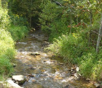 State stocked trout stream - Meadow Fork Creek