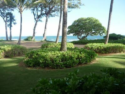#163 - Almost Oceanfront Kauai Rental By Owner Ocean View FREE WiFi Parking A/C