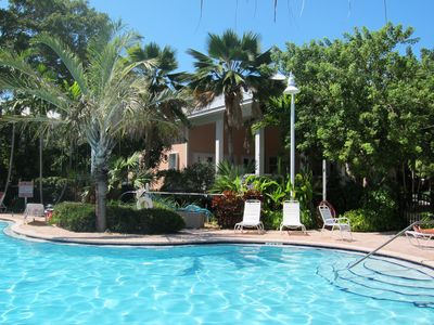 Beautiful pool with tropical landscaping