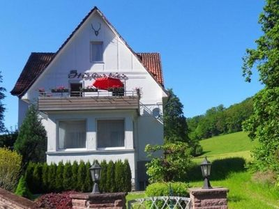 Photo for Large holiday home by Bad Pyrmont in Weser Uplands - balcony, terrace, garden