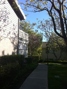 Photo for Resort area condo walking distance to Salt Creek Beach