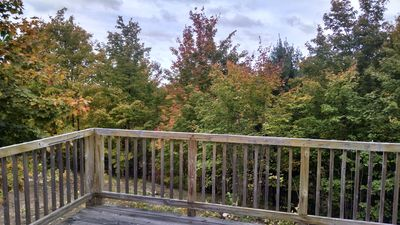 Back deck - Fall view