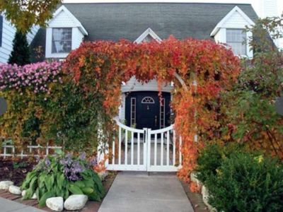 Photo for The House at Green Gables- a dream retreat in the heart of Ephraim!