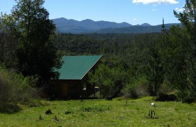 Photo for Hidden Valley Forest Cottage