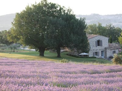 Photo for Beautiful Farmhouse: Spectacular Views, Lavender Fields, Pool