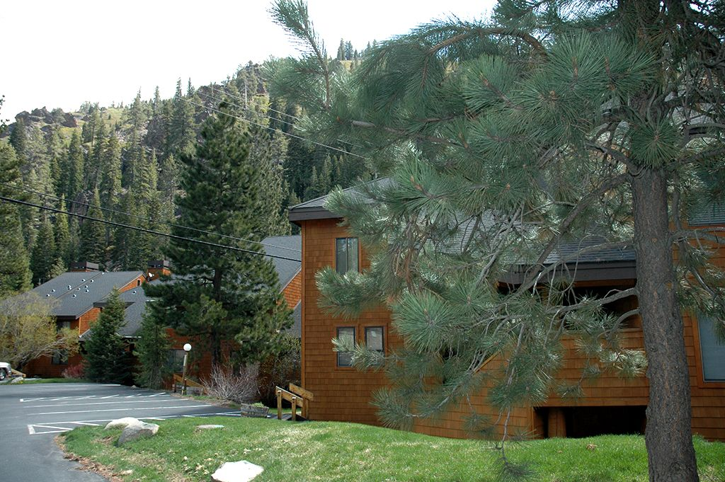 4br Condo By Alpine And Squaw Overlooking Vrbo