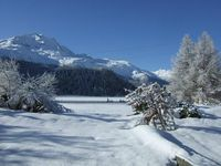 Great place to stay in the Engadin valley!
