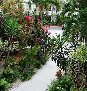 Photo for 1 block from beach - rare 1 bedroom unit, complete rehab