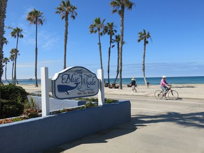 Photo for OCEANFRONT RESO1-bedroom at the Blue Whale, Family-friendly & Right on the Beach