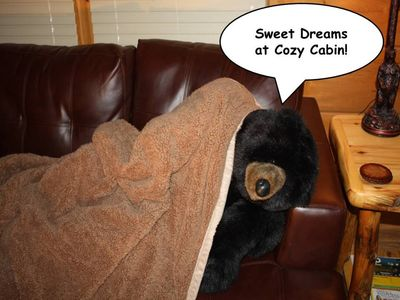 Cozy Bear sleeping after spending the day enjoying all the fun in Pigeon Forge!