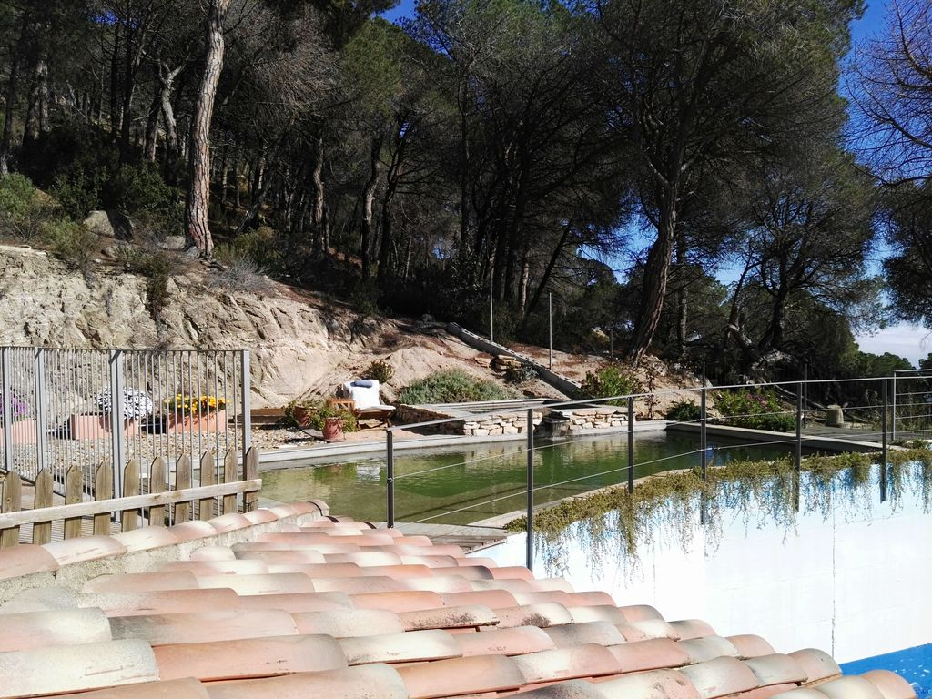 Exclusive house with ecological pool 20 minutes from for Barcelona pool garden 4