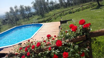 swimming pool of Fiordaliso  ( shared )