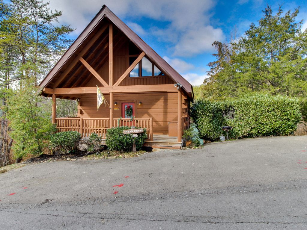cabins smoky indoor with pools tennessee private pool splash mountain bear