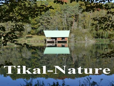 Photo for tikal-nature lodge on the water 2 people