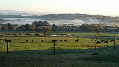 Photo for Farm Stay Holiday Accommodation Inverloch South Gippsland