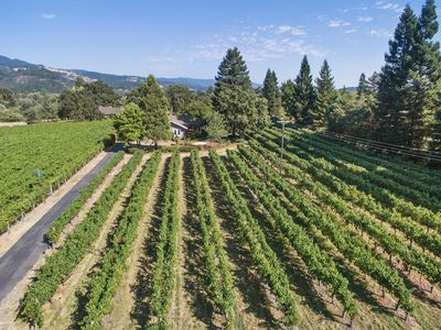 Photo for JUST OPENED Vineyard Estate Home Surrounded By Top Wineries