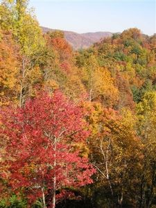 Fall colors of mountains from deck...view much more expansive than picture