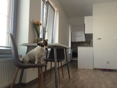 Photo for ELF, MODERN APARTMENT IN KOLIN, 5 min to center