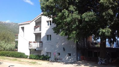 Photo for Apartment in Orebić (Pelješac), capacity 2+2