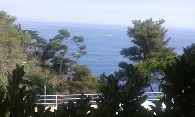 Photo for 1BR Apartment Vacation Rental in Collioure, Occitanie