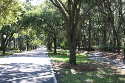 The low country drive from the Port Royal Plantation entrance to Crown Reef 103.