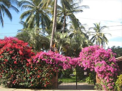 Casa Linda Entrance with  Bugambilia flowered arch and lots of 30 year old palms