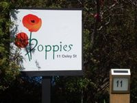 Poppies stay