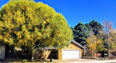 Country Home in the Pines of Flagstaff $99 OCT NOV SPECIAL