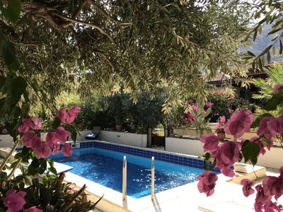 Photo for Gabi's Garden Cottage with private pool in Lapta