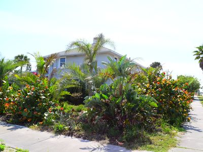 Photo for 1BR Apartment Vacation Rental in New Smyrna Beach, Florida