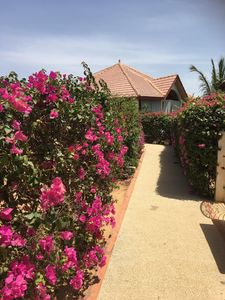 Photo for Very nice villa for rent in a private domain