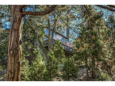Photo for Bear Haven Cabin in the Pines